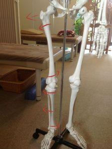 股関節痛脚の状態