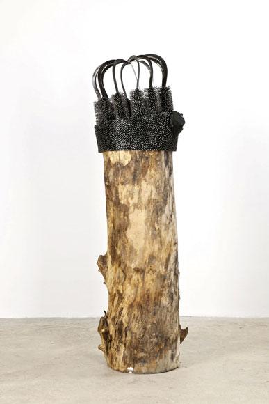 Yamou, L'arbre Couronné. 2010