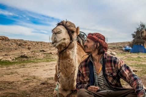 David et son chameau