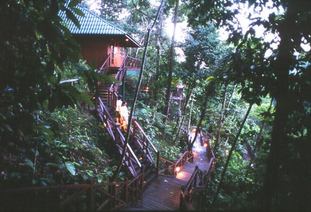 Tabin Wildlife, Kota Kinabalu