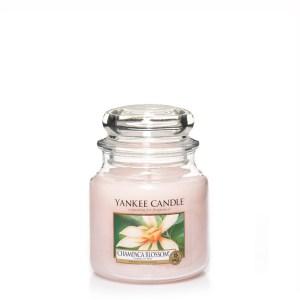 Champaca Blossom Medium