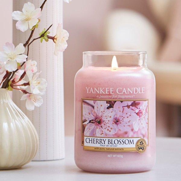 Cherry Blossom Display