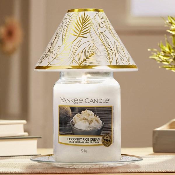SS21 Coconut Rice Cream 1