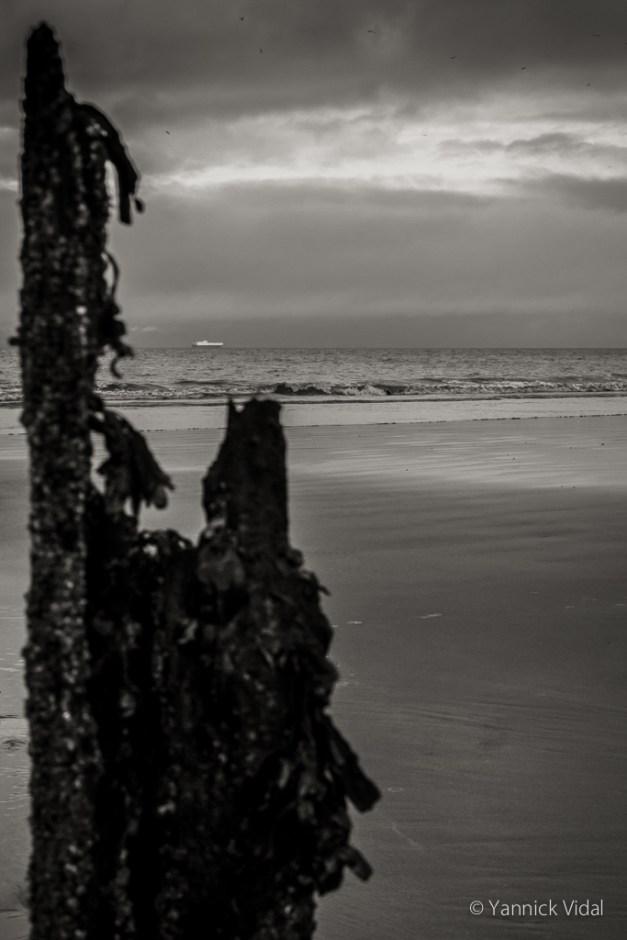 Blue Anchor beach