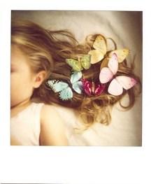 Papillon 90