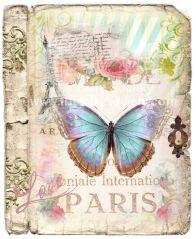 Papillon 58