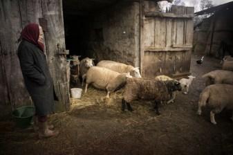 Mauricette est a la retraite mais elle s'occupe de ses betes et de son jardin pour subvenir a ses besoins alimentaires.Elle percoit 600 euros par mois.Elle a commence a l age de 14 ans.