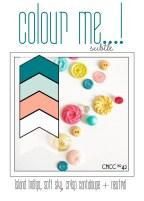 CMCC42