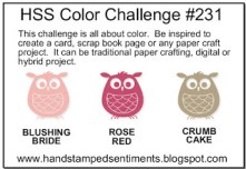 HSS COLOR CHALLENGE-001