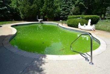 Havuz sorunları