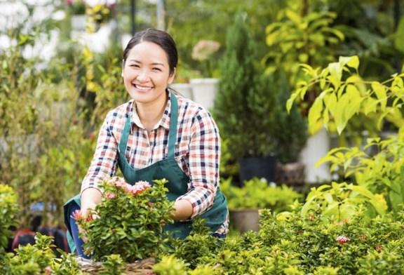 Bahçe bakımının 5 püf noktası