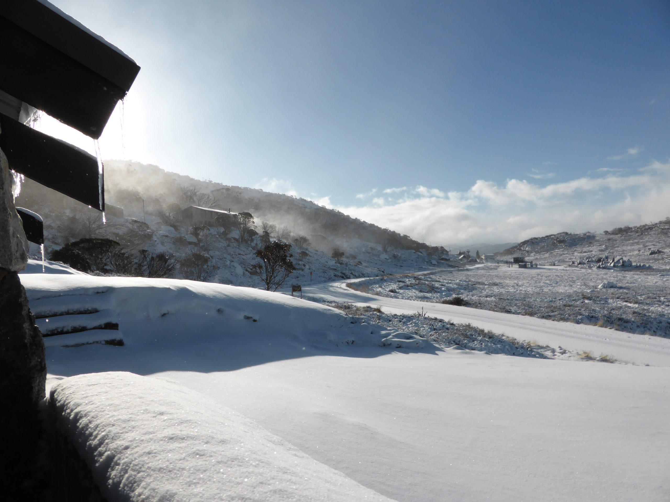 Snowy vista