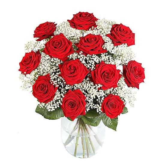 12-Ultimate-Red-Roses