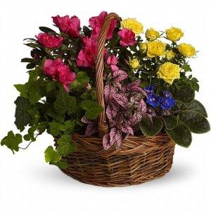 Blooming-Garden-Basket