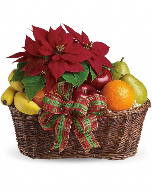 Fruit-and-Poinsettia-Basket