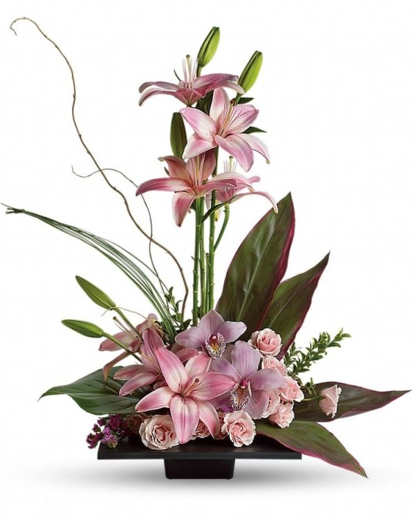 Imagination-Blooms-with-Cymbidium-Orchids