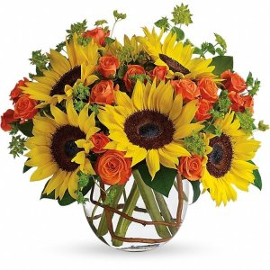 Sunny-Sunflowers