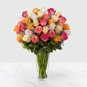36 Long Stem Multi Colored Roses