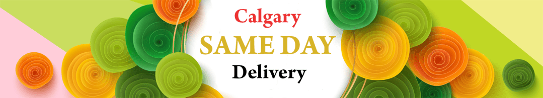 Calgary same day delivery banner 3