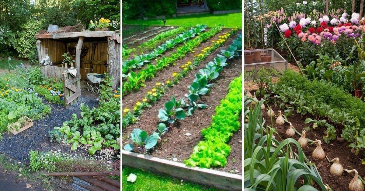 15 Herb Amp Vegetable Garden Ideas YARD SURFER