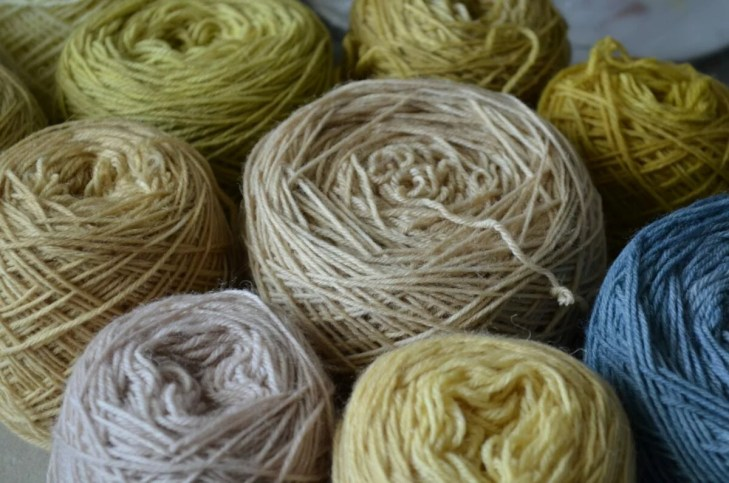 Assorted sock yarns dyed with different mushrooms, lichens or plants