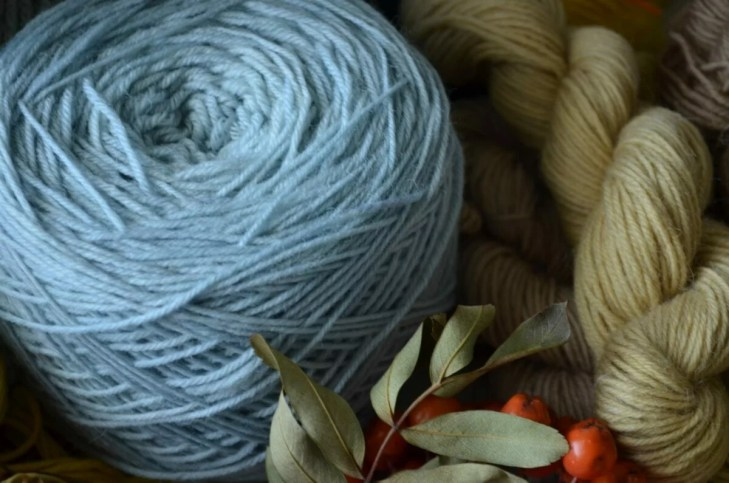Sock yarn dyed with privet berries (Ligustrum vulgare)