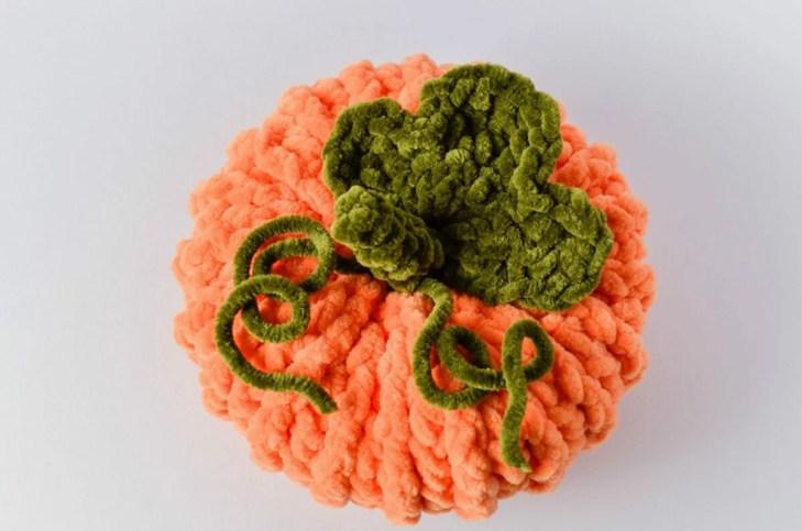 pumpkin 27 scaled