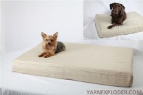 A dogbed