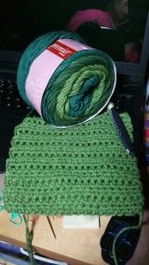 Primier Sweet Roll Mint Swirl and Scarf
