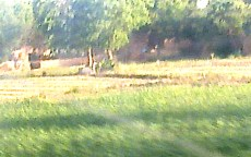 Harvesting of wheat, starts in spring. This pic was taken from running train. Hence the painting like quality.