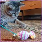 Crochet Tutorial: Catnip Sardine Toy