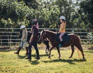 horse ridding lessons for kids