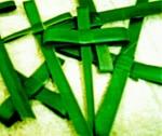 Palm Cross Craft