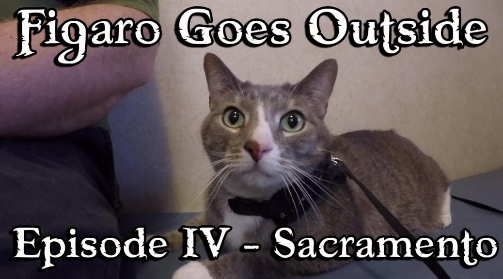 Figaro Goes Outside,  Ep. 4 – Sacramento