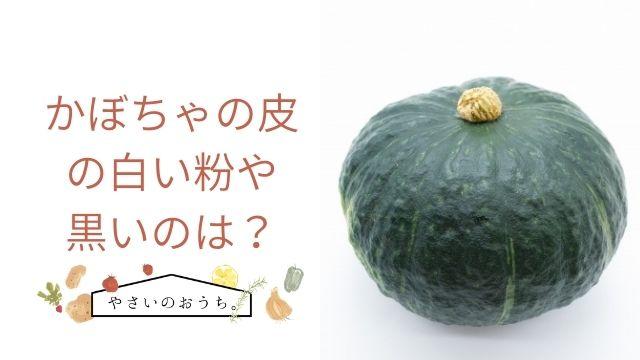 の 皮 かぼちゃ