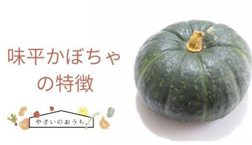 味平かぼちゃの特徴や旬の時期!味は甘みが強い