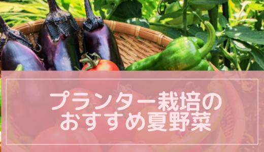 プランター栽培のおすすめ夏野菜!コンパニオンプランツで効率アップ