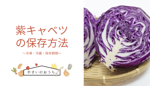 紫キャベツ(赤キャベツ)の保存方法|冷蔵・冷凍・保存期間と保存食レシピ!