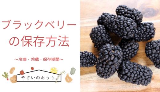ブラックベリーの保存方法 冷凍・冷蔵・期間と保存食レシピ!干して長持ち