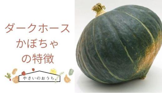 ダークホースかぼちゃの特徴や旬の時期!味は甘くホクホク感あり!