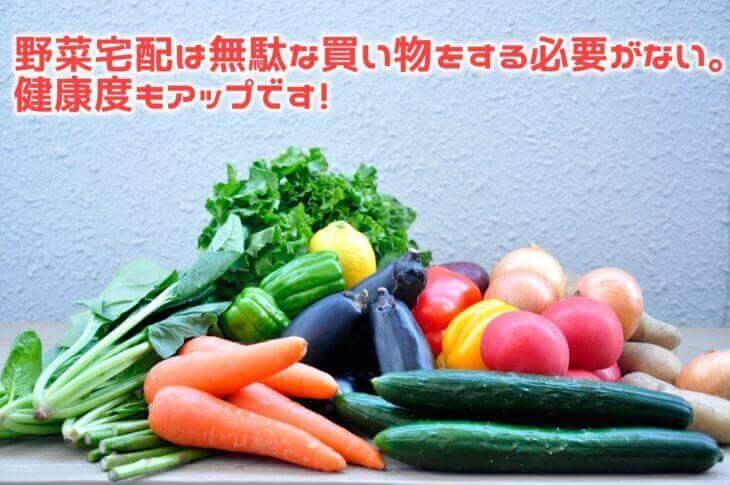 野菜宅配はスーパーと比べて値段が高い?安い?