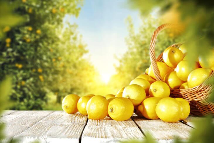 レモンの効果的な食べ方とおすすめレシピ