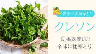 『世界一の野菜?』クレソンの栄養や効果効能は?おすすめレシピも