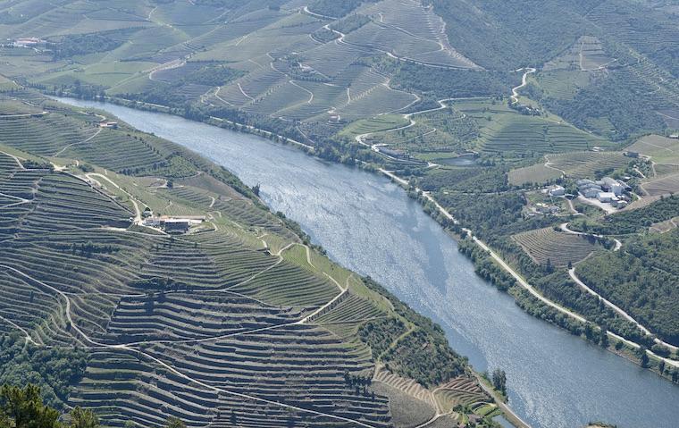 ドウロ川上流ワイン生産地域