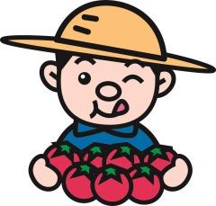 多量のトマト