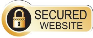 How-to-secure-a-website-yashl1.sg-host.com