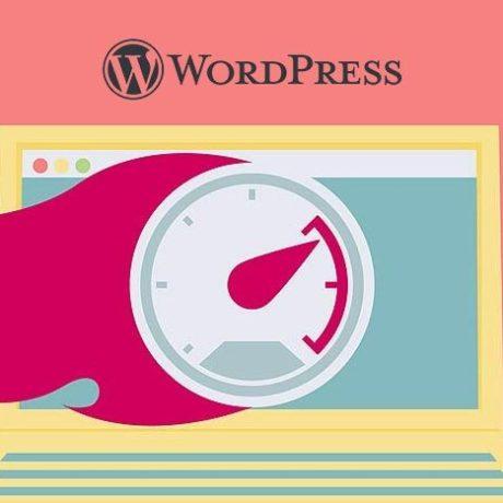 plugin-cache-terbaik-wordpress-gratis-1871941