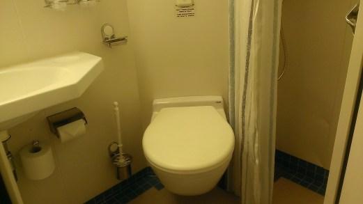 Litet men fullständigt badrum