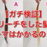 """【ガチ検証】""""ブリーチした髪にパーマはかけられるの!?"""""""
