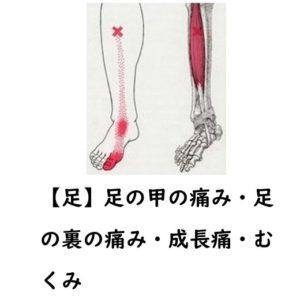 足の甲の痛み・足の裏の痛み・成長痛・足のむくみ